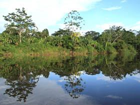 Provincia Maynas
